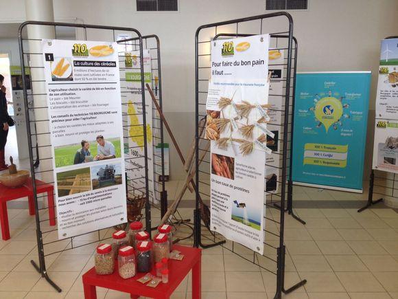 Forum agriculture et alimentation