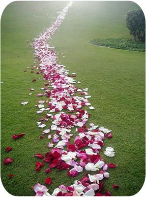 Fleurs-deuil-enterrement