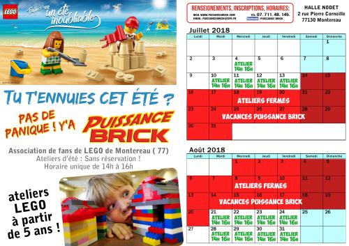 PAS-DE-PANIQUE-YA-PUISSANCE-BRICK-2018